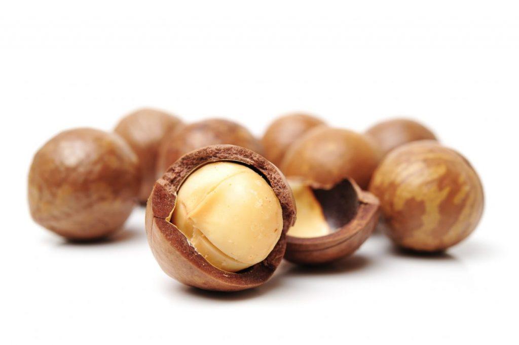 stress relief macadamia nuts