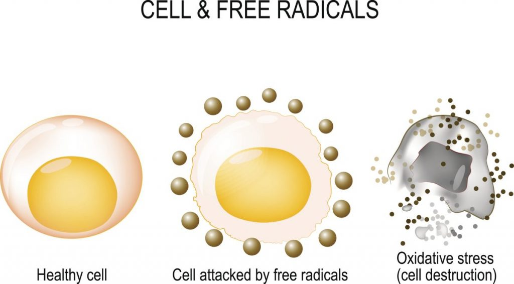 free radicals benefits of glycine