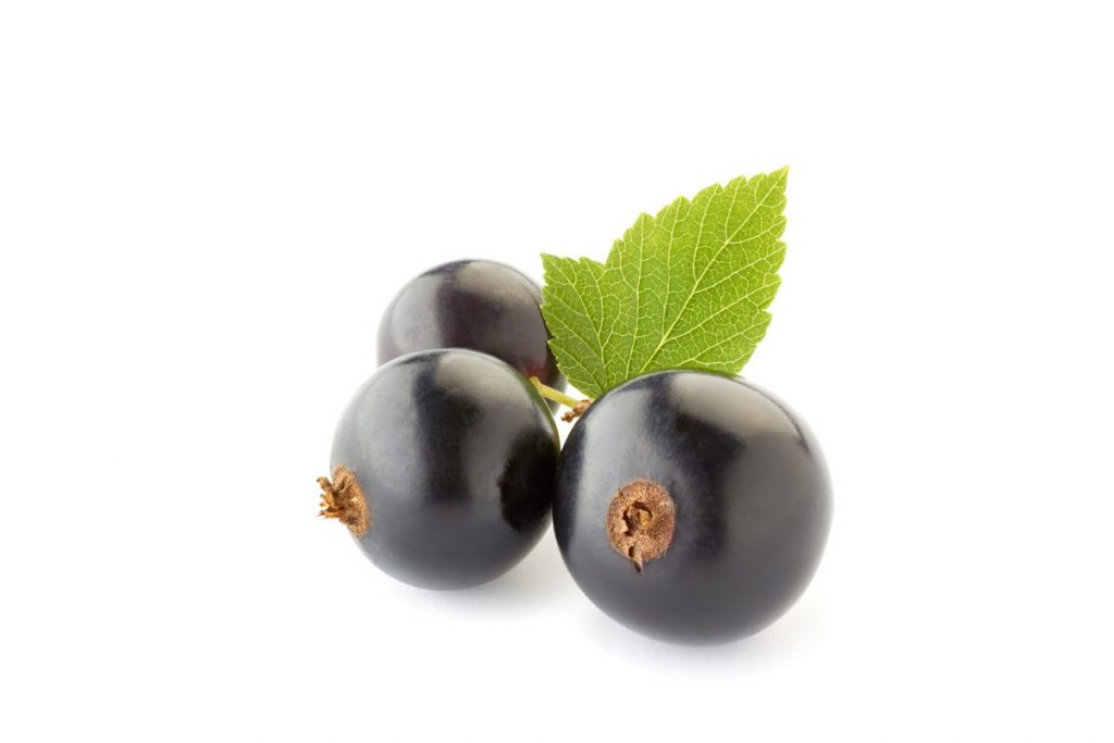blackcurrants inflammation
