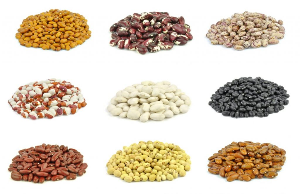 legumes Fermentable carbohydrates