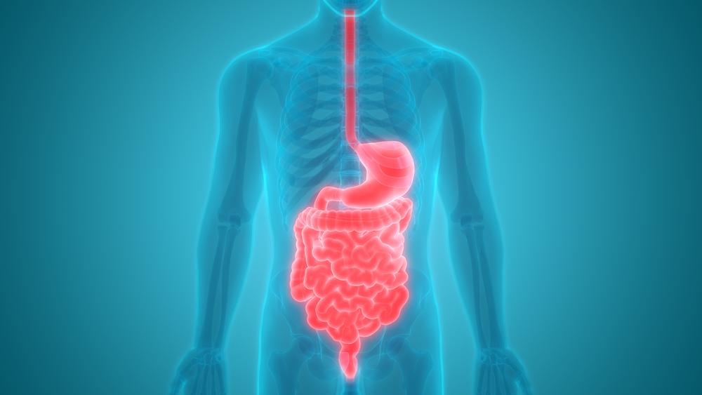 Steatorrhea Or Fatty Stool