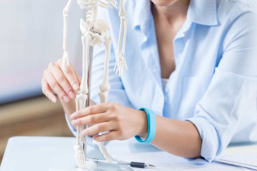 star anise healthy bones