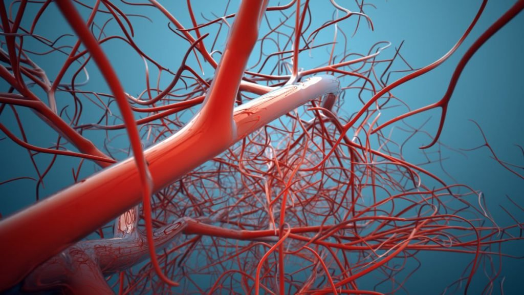vasodilation blood vessels