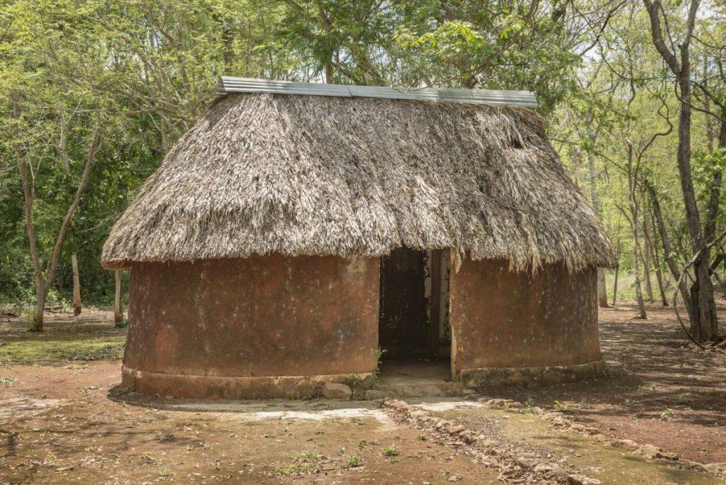 Chagas disease where