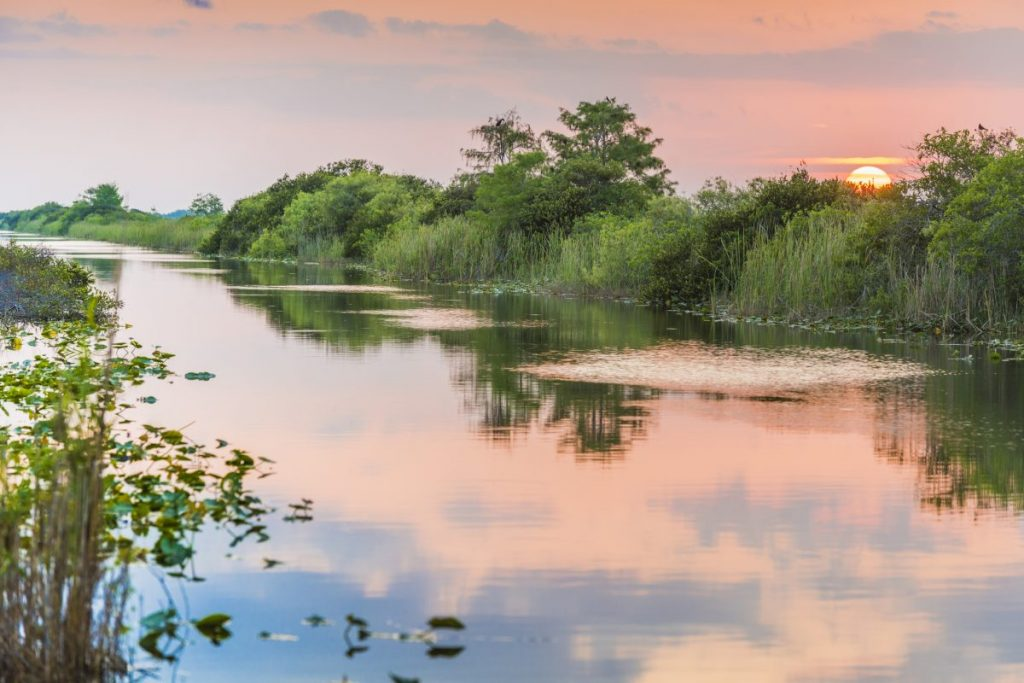 everglades Best National Parks in the US