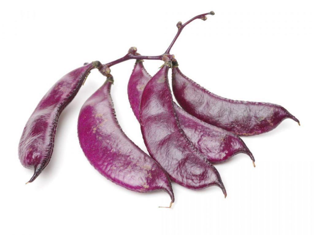 health benefits of hyacinth
