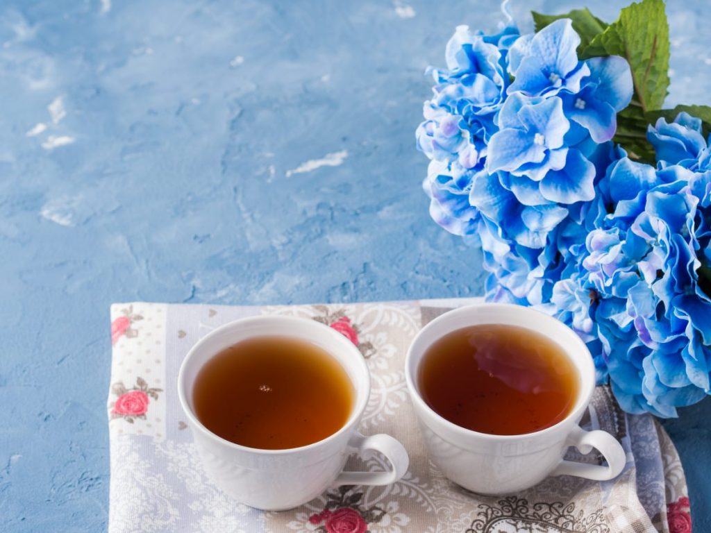 tea benefits of hydrangea