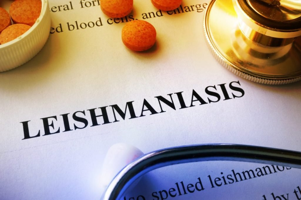 cutaneous leishmaniasis
