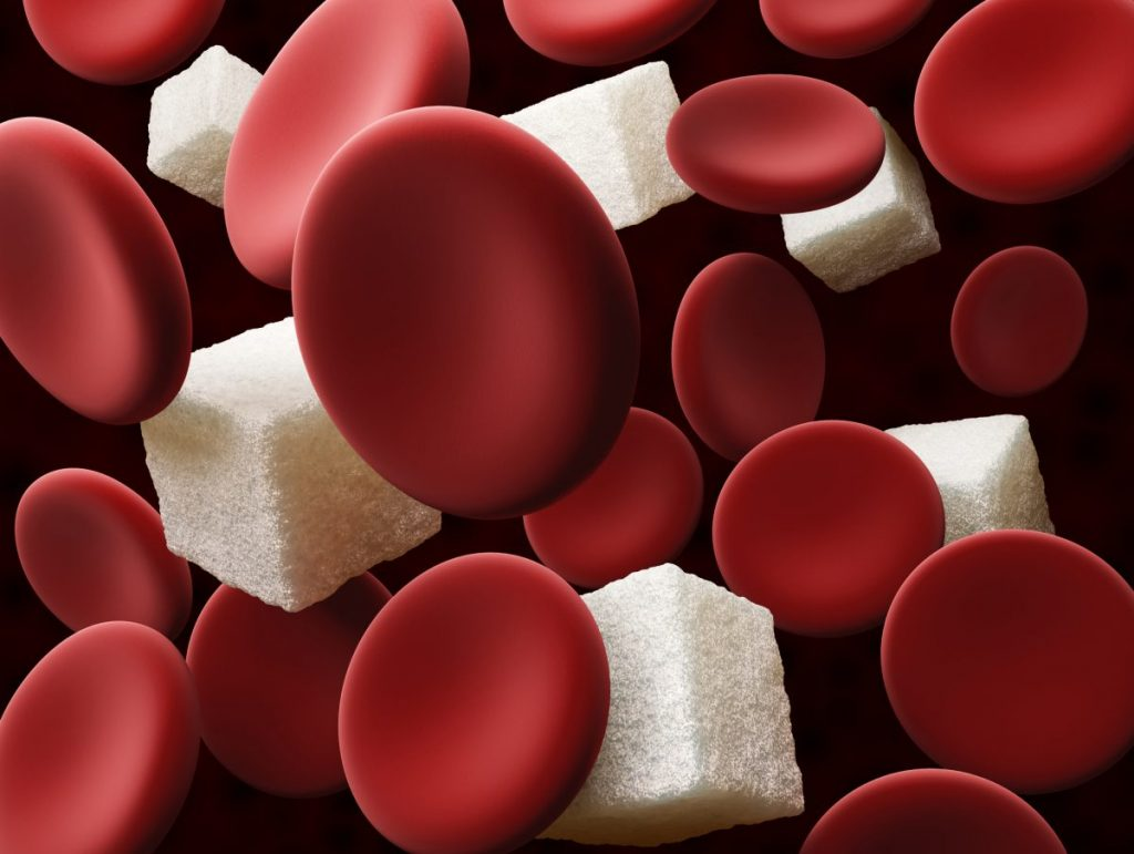 blood sugar Homeostasis
