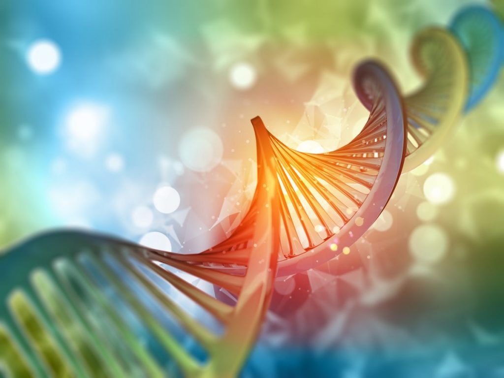 DNA Damage Causes Cancer