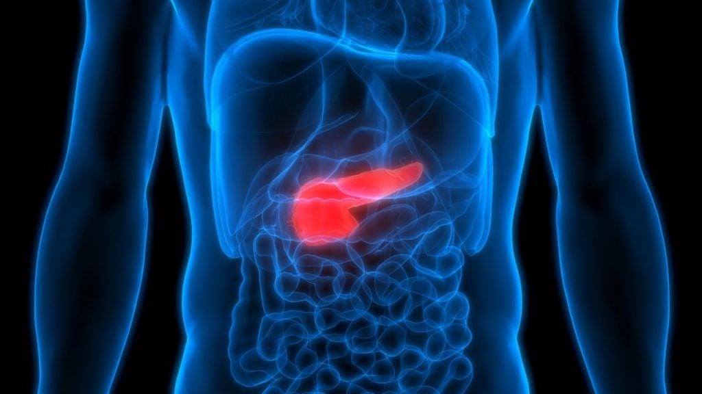 pancreatic insufficiency