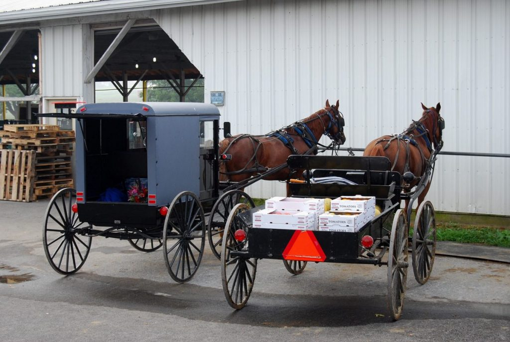 transportation amish
