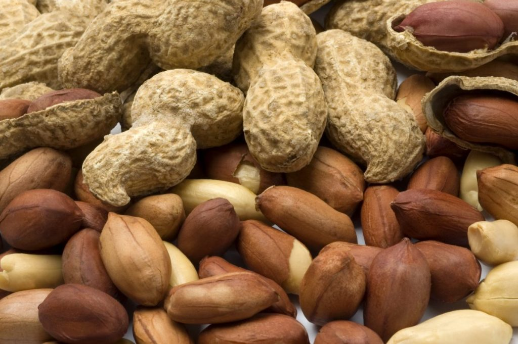peanut Common food allergies