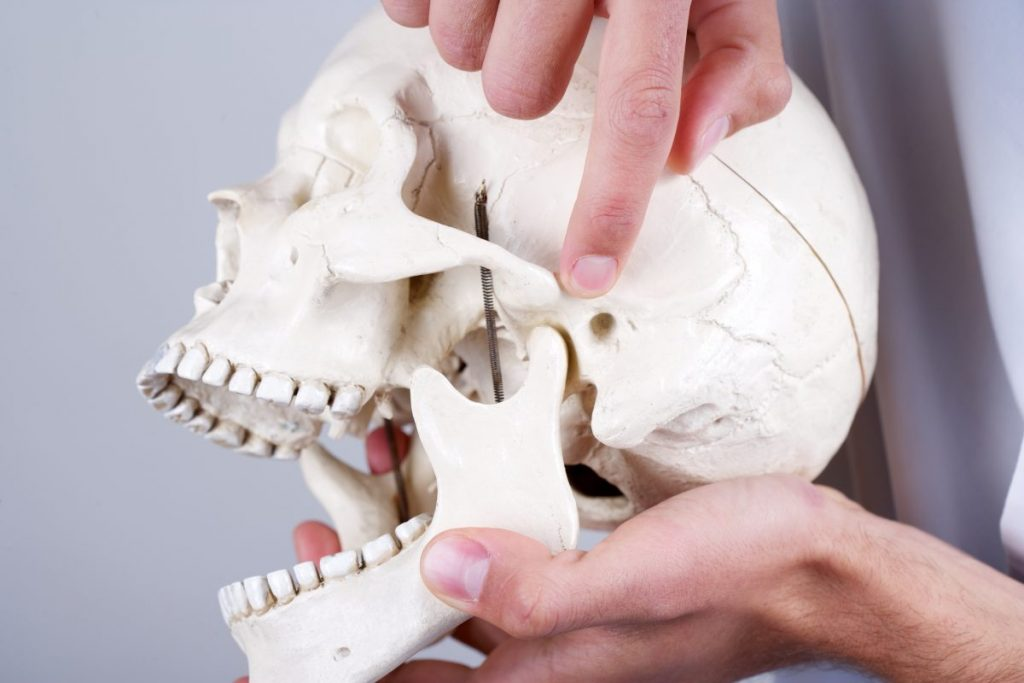 jaw temporomandibular joint dysfunction