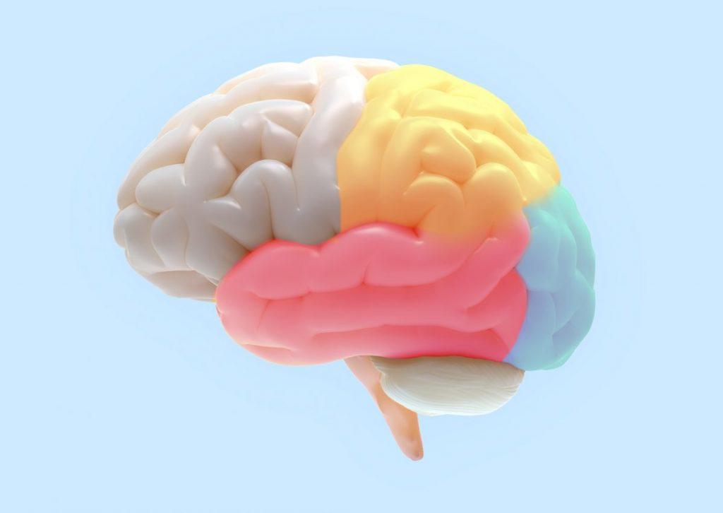 brain Gerstmann syndrome