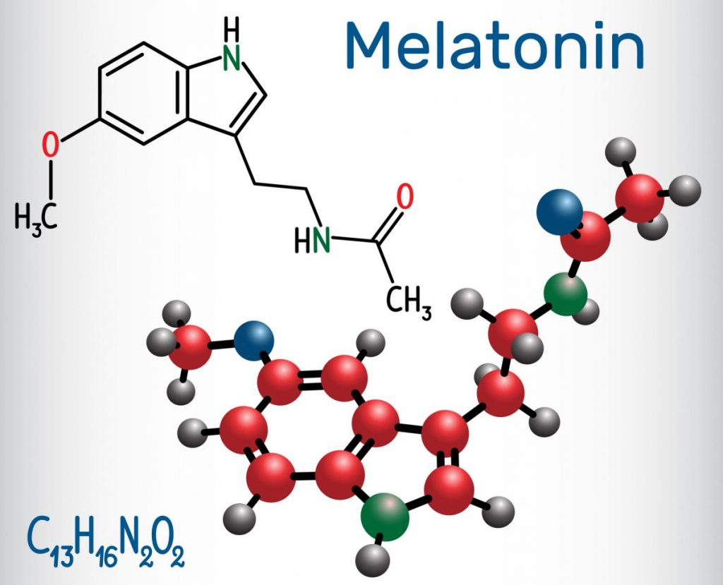 melatonin The pineal gland