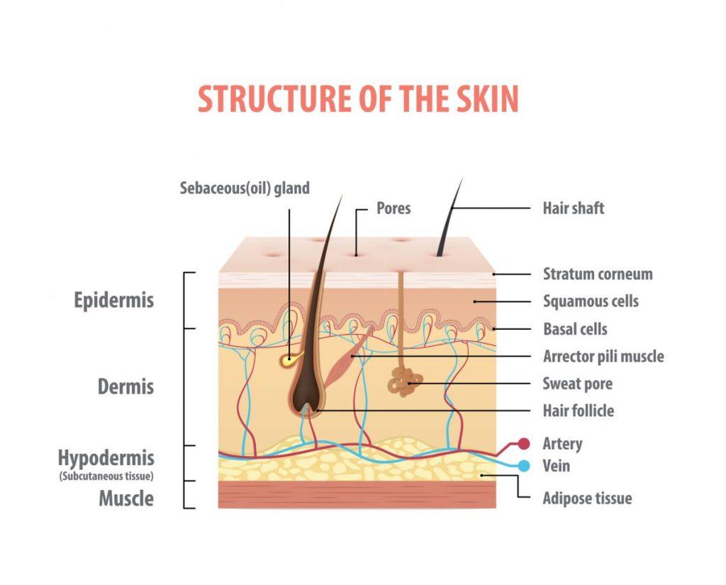 skin rare genetic disorders