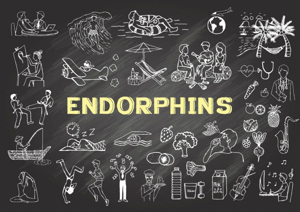 endorphins Neurotransmitters