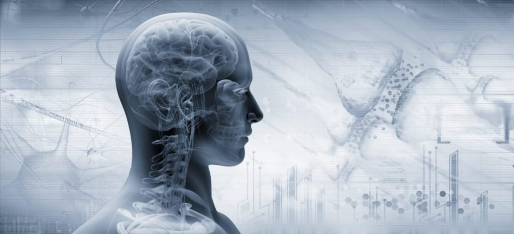 communication the brainstem