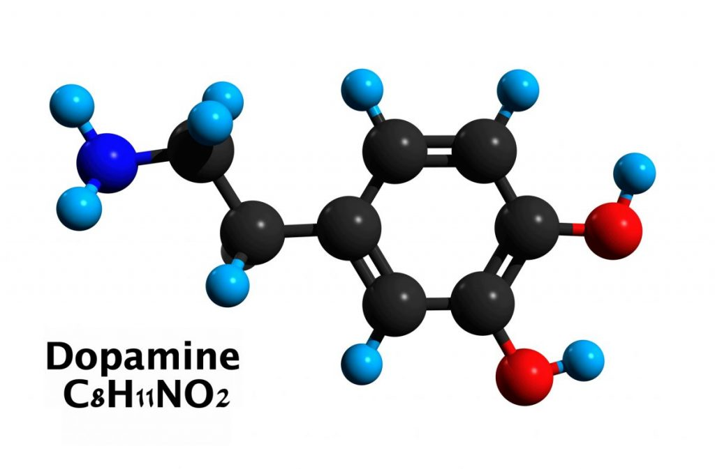 dopamine Neurotransmitters