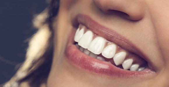 The Anatomy of Teeth
