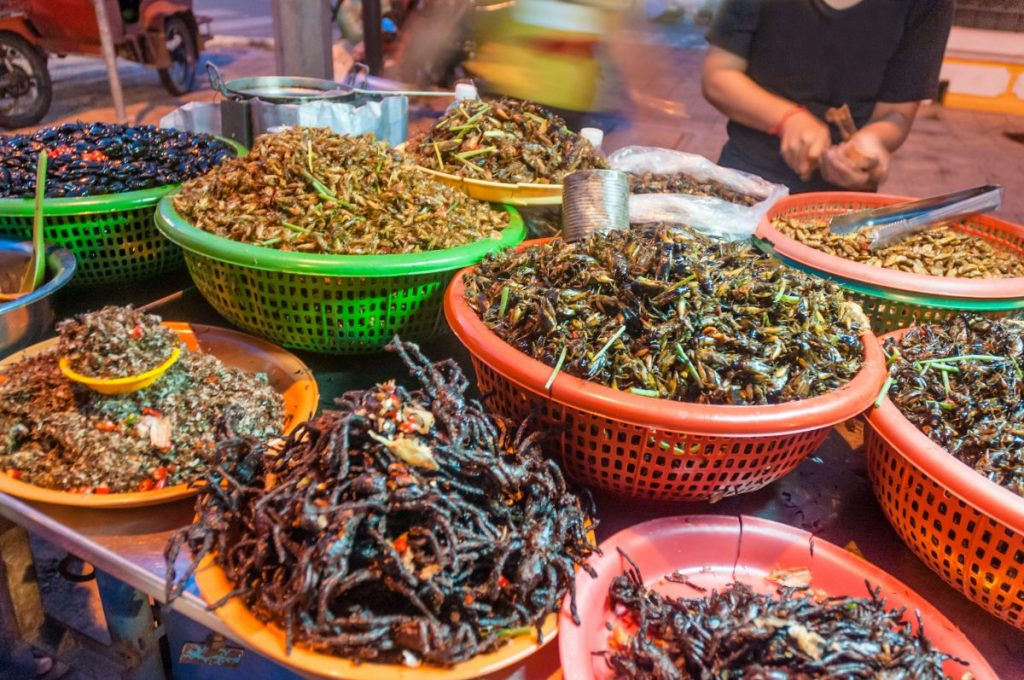 fried insects and bugs