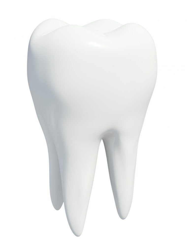 portion teeth