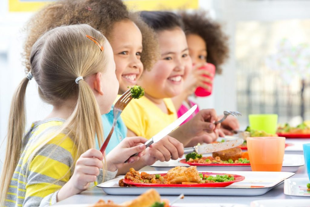 history of Childhood obesity