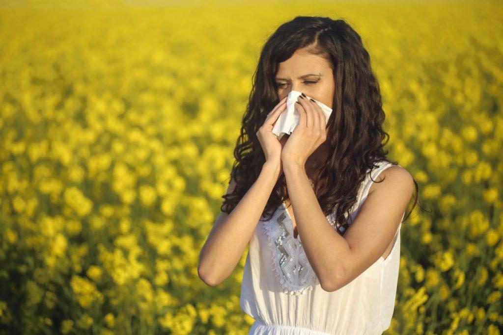 hay fever nasturtium