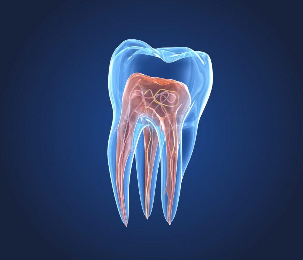 blood teeth