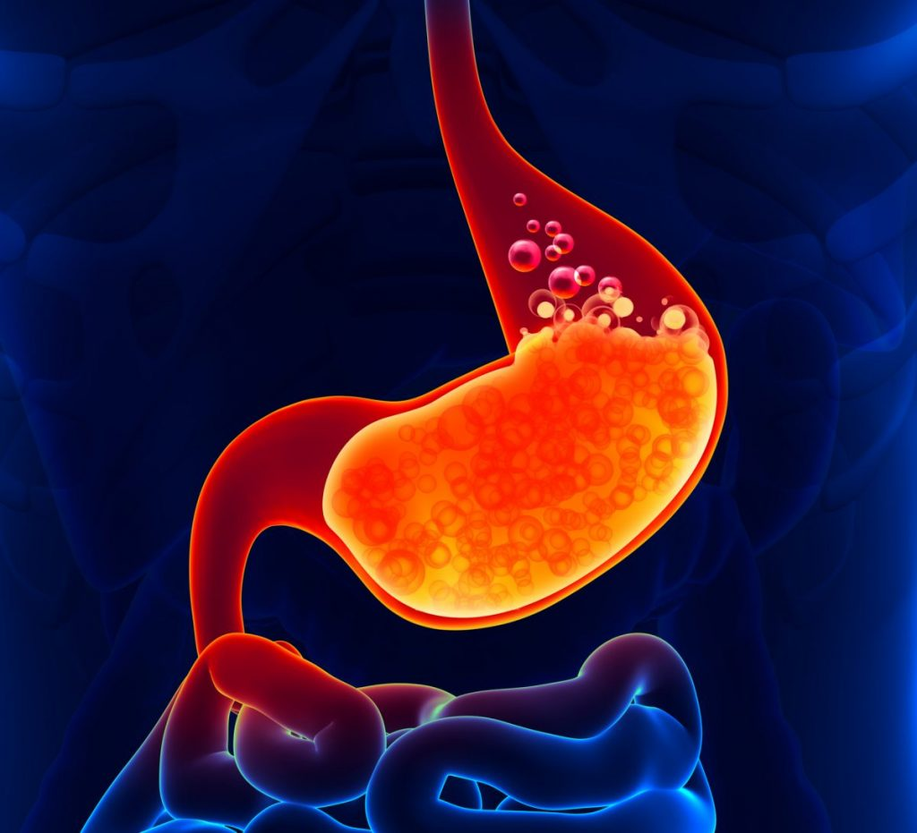 gastric acid body fluids