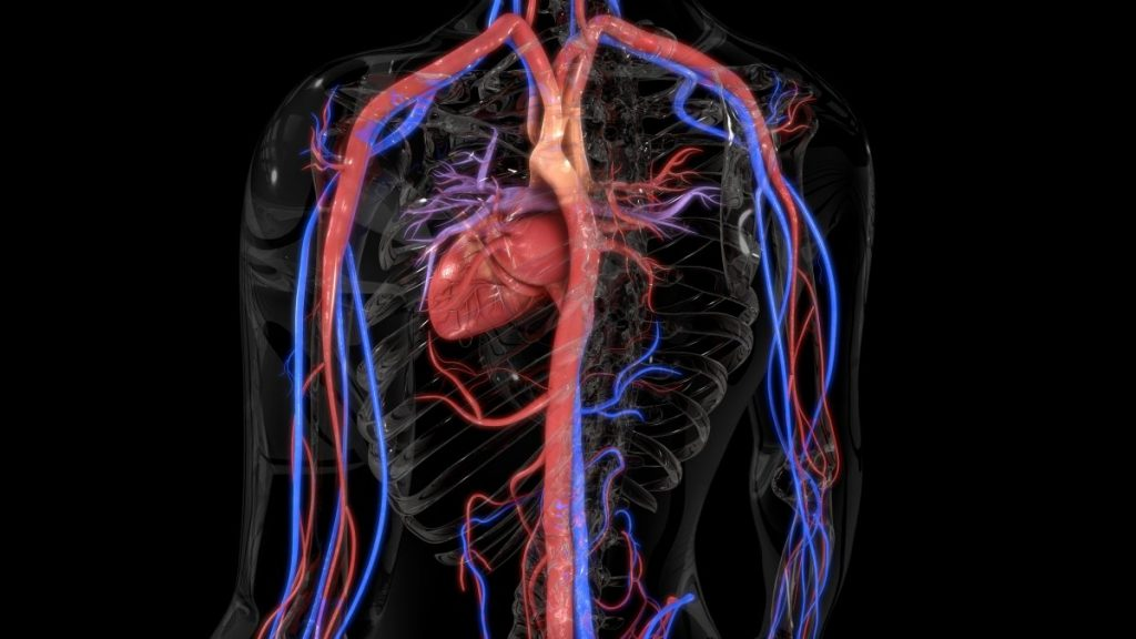 symptoms of Cardiac cachexia