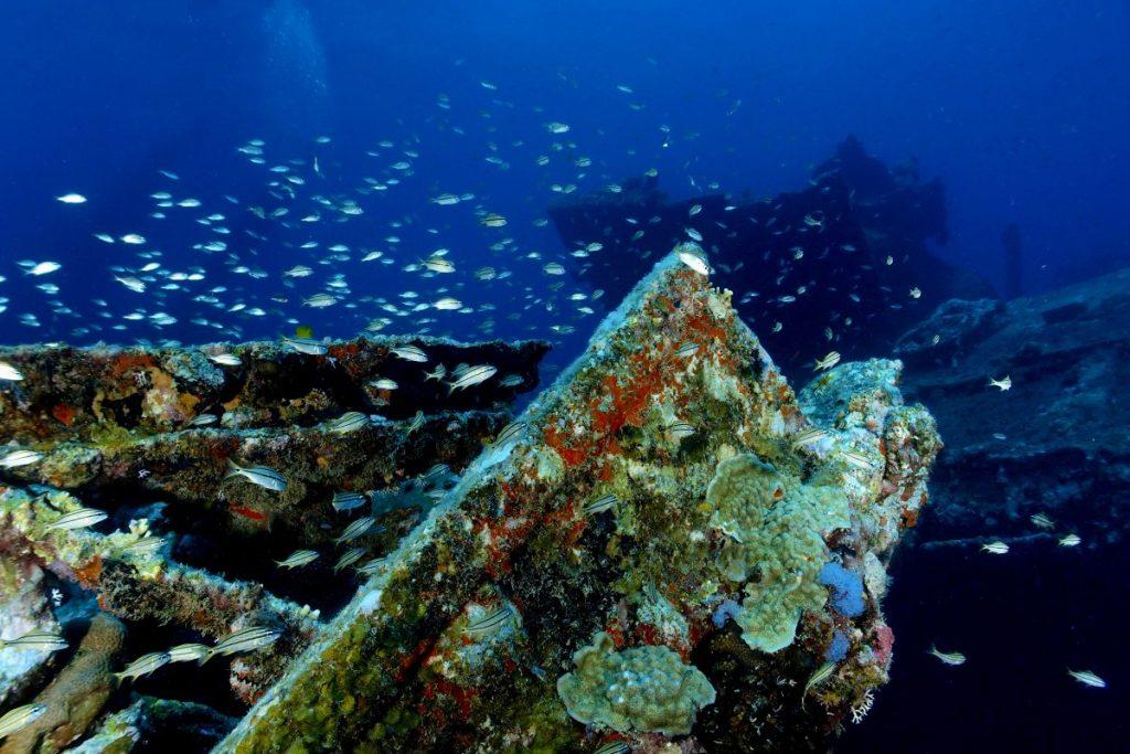 scuba Aruba
