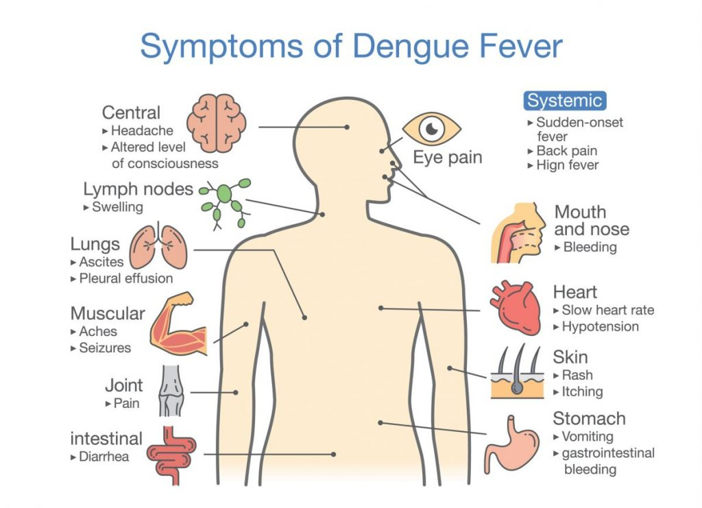 dengue Neglected tropical diseases