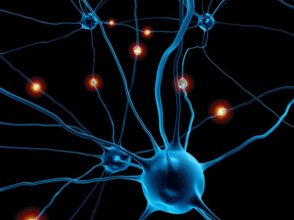 neurons, facial nerve, compression, abnormal