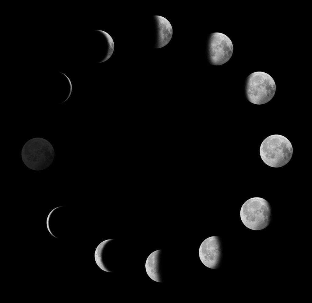 lunar cycle earth