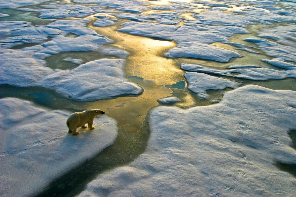 climate change sea levels