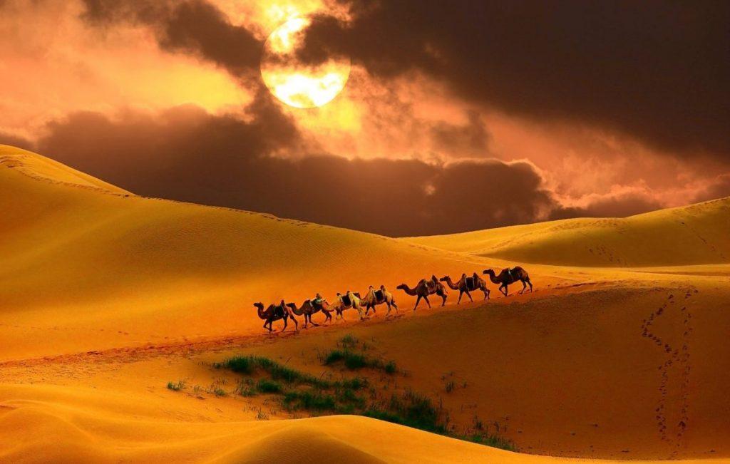 Genghis Khan education trade