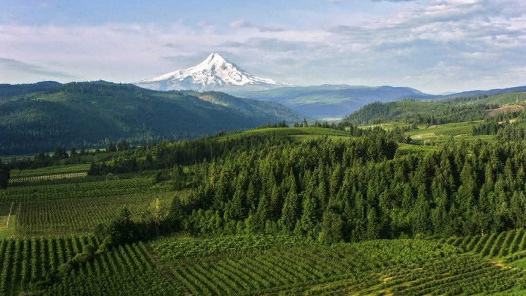 Oregon living