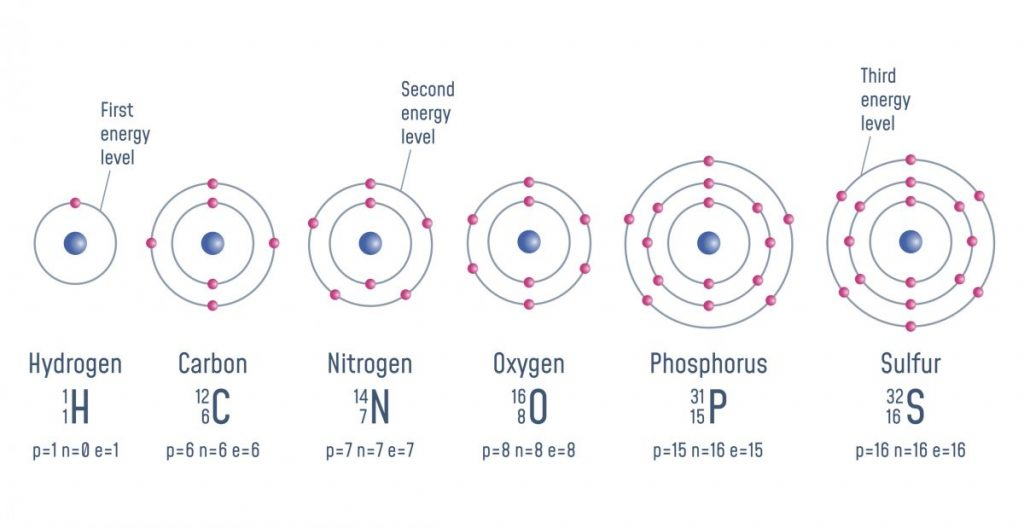 fusion and fission physics
