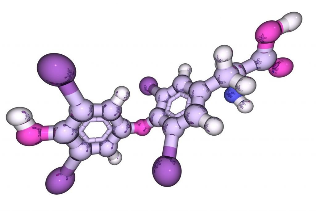 hyperthyroidism thyroxine hormone