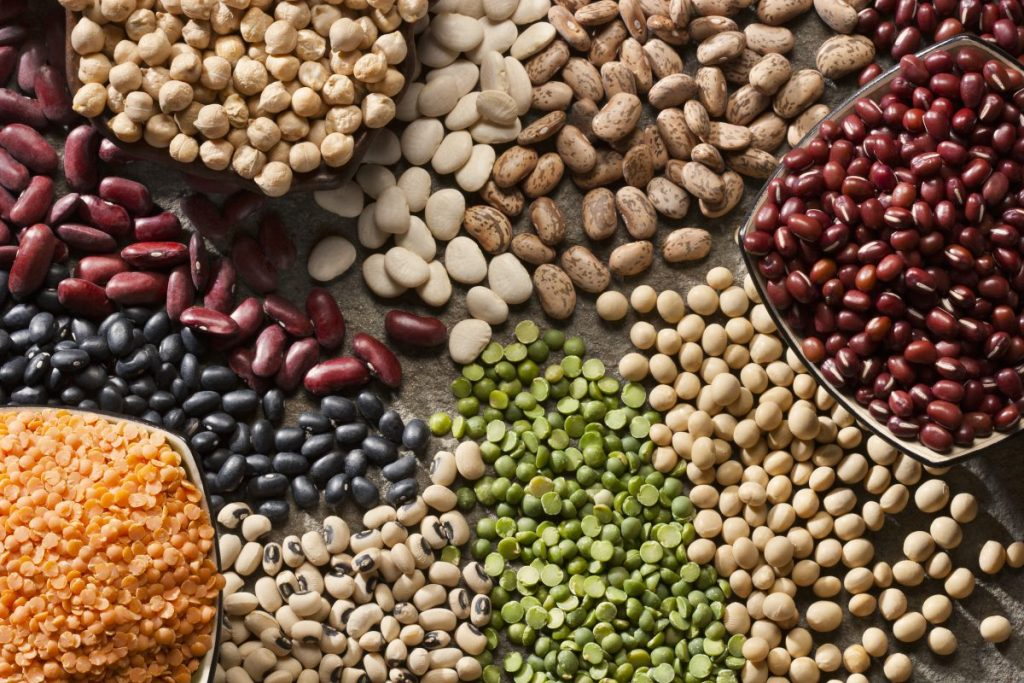 Dry Beans Legumes