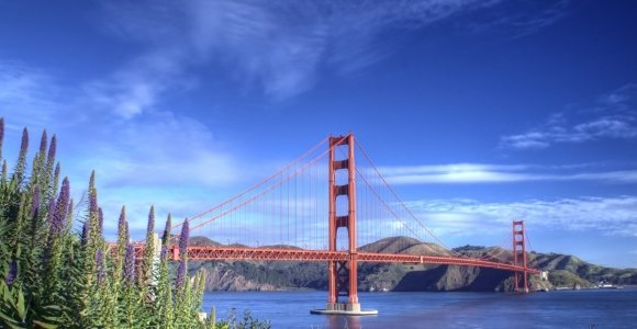 Fun and Engaging Things to Do with Kids In San Francisco