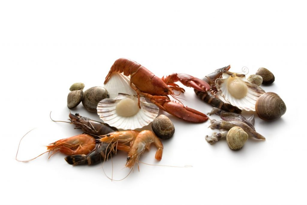 seafood sources of iodine