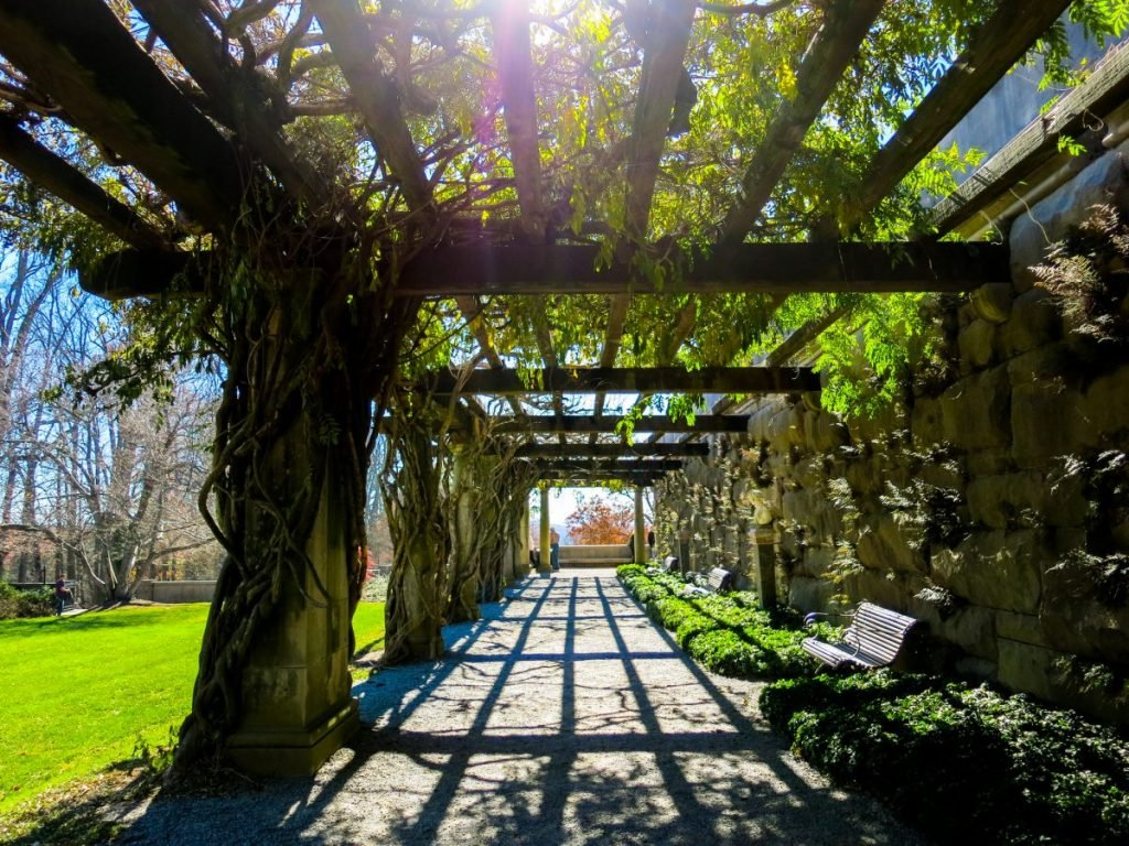 Ivy-covered walkway in Biltmore Gardens