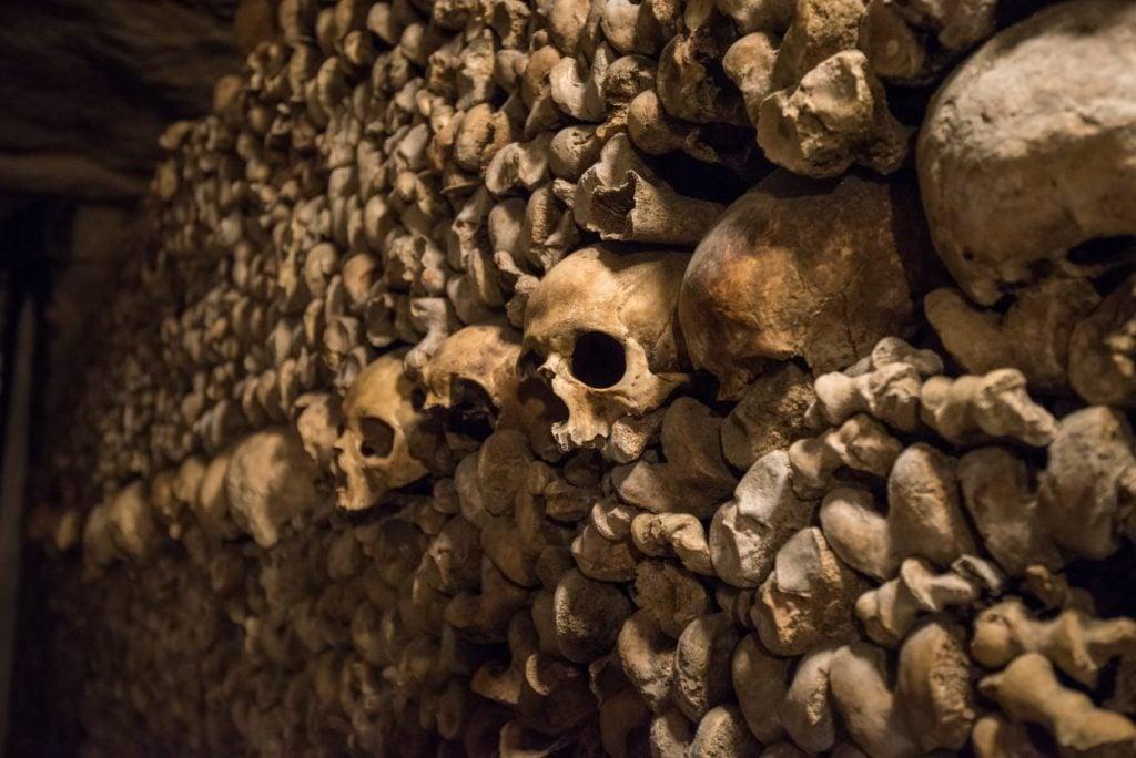 skulls paris catacombs
