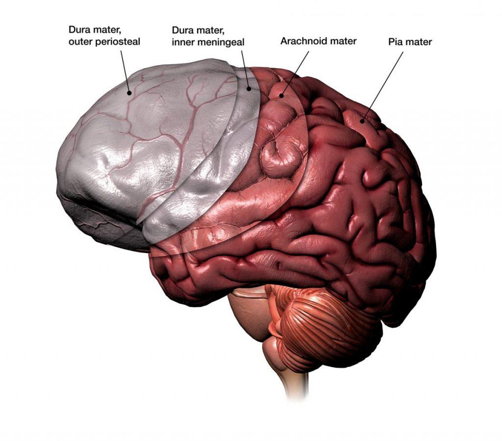 Hemangiopericytoma meningeal