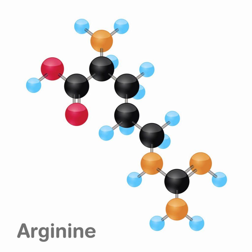 arginine amino acid urea