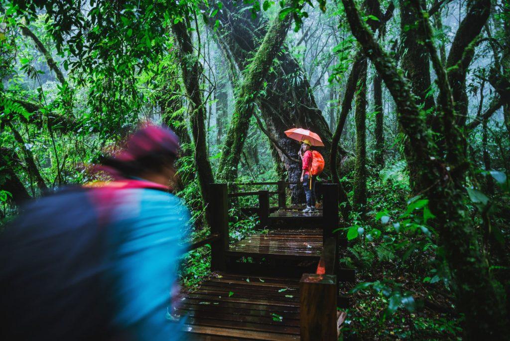 weather Thailand travel tourists