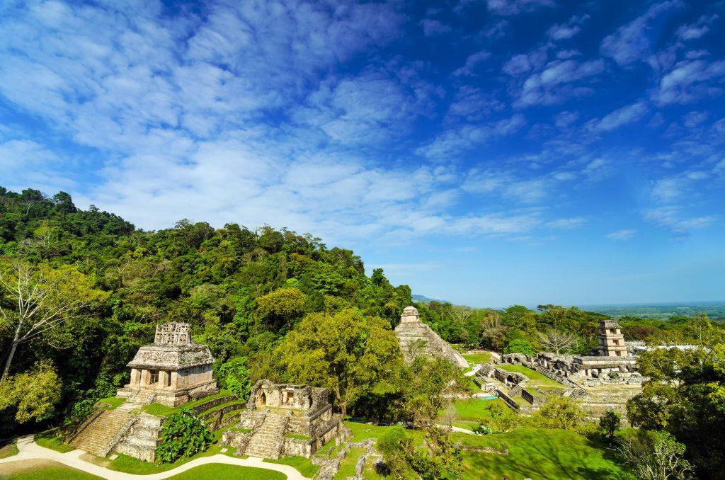 Palenque View